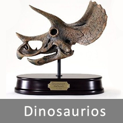 dinosaurios_cat